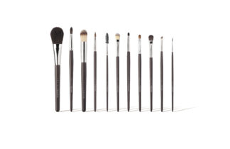 11-Piece Complete Brush Set